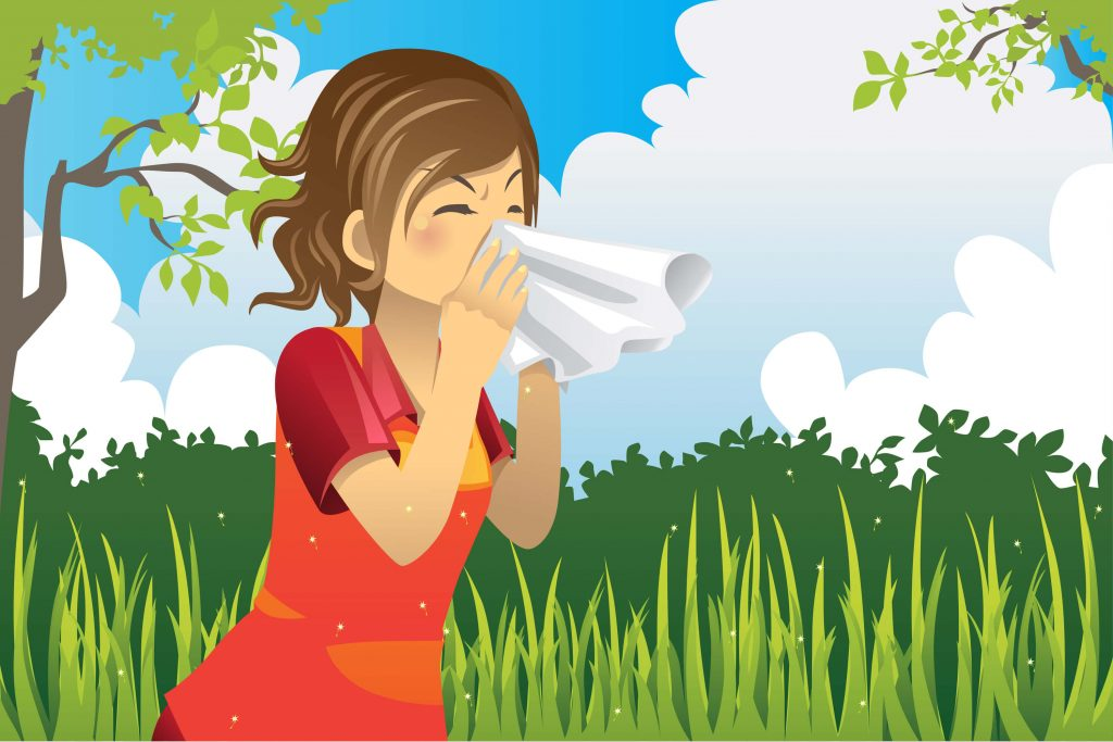 essential oils for allergies illustration