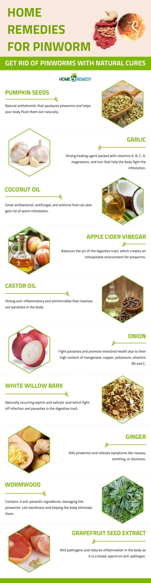 12 Home Remedies for Pinworms [Infographic] - Home Remedy Book